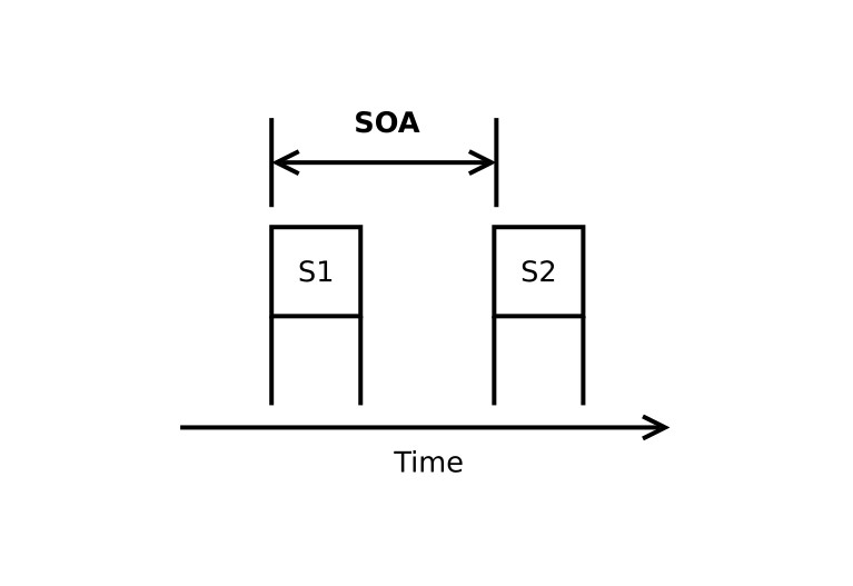 Figure 1. Stimulus Onset Asynchrony